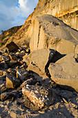 Rock Fall Exposing Fossils