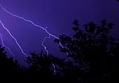 Lightning storm over Botswana