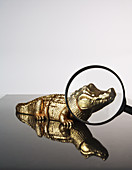 Magnifying Glass and Toy Crocodile