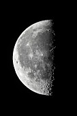 21-Day Moon