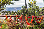 Religious offerings, Kilauea volcano, Hawaii, USA