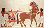 Royal Chariot, Amarna Art, 18th Dynasty
