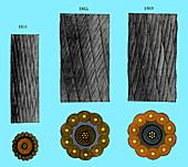 Transatlantic Cable Design Templates, 1850-1860s