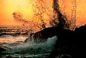 Pacific Ocean Waves on Rocks