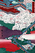 Hasedera Temple Cherry Blossoms, 1859