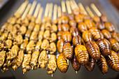 Cooked cicadas on sticks