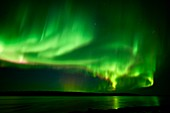 Aurora borealis, Russian Arctic