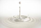 One single milk drop splashing with ripples, illustration