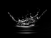Crown splash in water with ripples, illustration