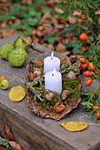 Kerzen mit Moos und Eicheln auf Baumrinde
