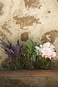 Lavendel, Salbei, Rosmarin und Rosen vor einer Steinwand