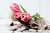 Tulpen liegen auf Pflanzschaufel