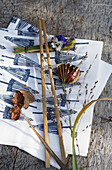 Chopsticks, sweet chestnuts, grasses and viola on Japanese paper