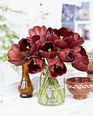Tulipa 'Dom Pedro'