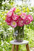 Tulipa 'De Groot'