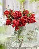 Tulipa 'Rococo Double'