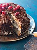 Buckwheat cake with grated chocolate and raspberries