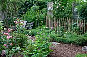 Buchsbaumgarten mit Rosen und antiker Gartenbank