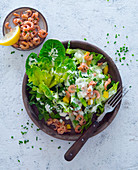 Cos lettuce with shrimps and a chive dressing