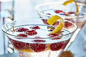 Vodka tonic with raspberries
