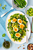 Asparagus, broadbean, snow peas salad with egg
