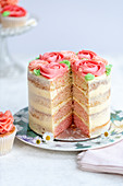 Ombre layered cake