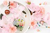 Frühlings-Kollage mit Blüten von Zimmerazalee