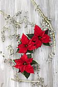 Dekoration mit Weihnachtsstern und Zweigen