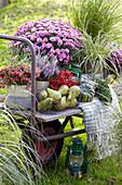 Herbst Arrangement mit Chrysantheme, Torfmyrte, Heide, Gräsern, Birnen und Kürbissen