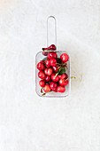 Fresh Cherries in Metal Stewpot