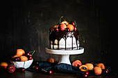 Chocolate Cake with Apricots and Cherries