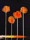 Curry lollies (molecular gastronomy)