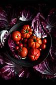 Stilleben mit verschiedenen Tomatensorten und Radicchioblättern