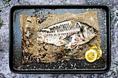 Skeleton of grilled sea bream on baking tray