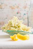 Fresh elderflowers in a glass bowl