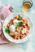 Rigatoni with pesto rosso, burrata and fried basil