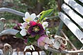 Sträußchen aus Blüten von Christrosen und Schneeglöckchen an Stuhllehne