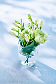 White carnations in glass of water
