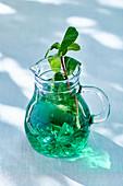 Mint water in a glass mug