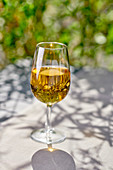 Weissweinglas im Garten