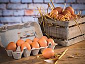 Fresh chicken eggs in an egg carton