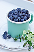 Blueberries in an enamel mug