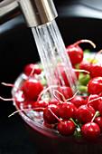 Washing radishes