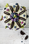Blueberry and yoghurt cake with chocolate biscuits