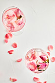 Gin and tonic cocktail with rose infused tonic and frozen roses