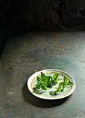 Frischer Majoran auf Keramikteller