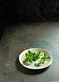 Fresh marjoram on a ceramic plate