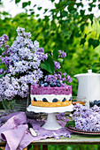 Blueberry cake with cream cheese mousse