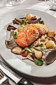 Wild salmon with mushroom risotto, chantarelles, shitake, artichoke hearts and glazed pearl onions