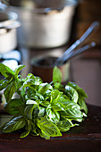Fresh basil on a wooden table